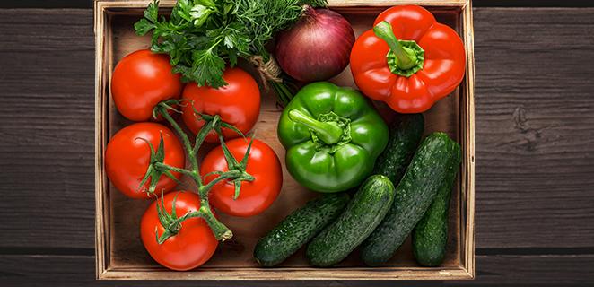 L'orto in balcone: pomodori, zucchine e melanzane homemade