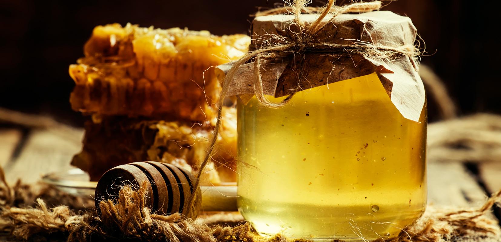 Giornata mondiale delle api:  ecco cinque semplici gesti per proteggerle.